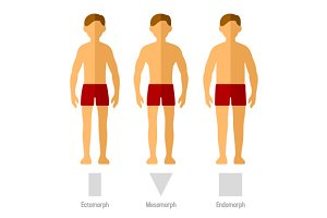 Men Body Types