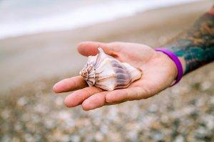 Holding Seashell I