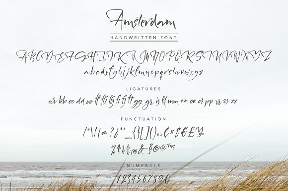 Amsterdam Handwritten Font in Script Fonts - product preview 4
