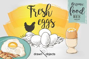 Eggs Hand drawn Vector set