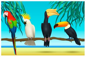 4 realistic tropical birds