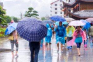 people walking in the falling rain.