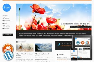 Pure - Responsive WordPress Theme