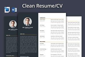 Clean Resume - CV 2017