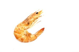 fresh shrimp isolated on white background.