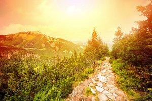 Colorful mountains landscape.