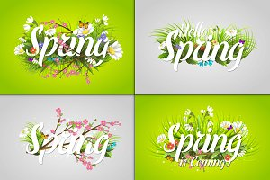 Floral spring background with text