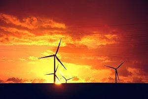 Windmills at sunset.