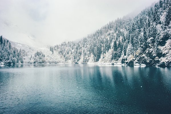 Winter Lake and snowy forest