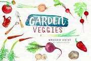 Watercolor Clip Art - Garden Veggies