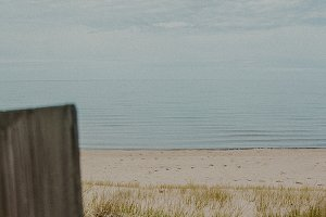Beach with wooden fence