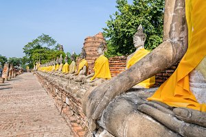 Row of Buddha statue sitting