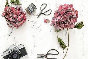 Flat lay flowers vintage camera