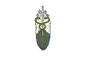 Medical Snake Eagle Feather Drawing