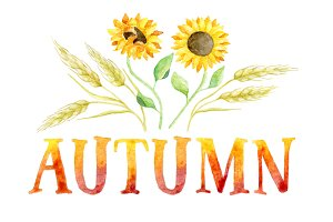 3 AUTUMN greeting cards