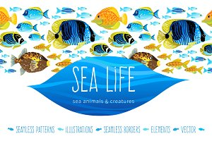 Vector Kit Of Sea Life Elements.