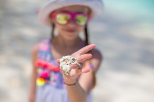Close up kid's hands holding beautiful sea shells