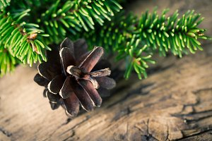 Christmas fir cone on wooden background