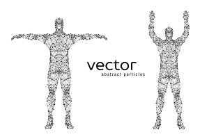 Vector illustration of male body
