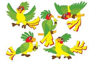 Vector Parrots Set