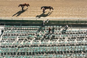 Looking Down on Horse Race Track