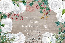 Watercolor white roses clipart