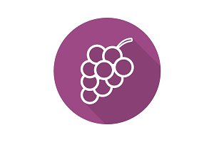Bunch of grapes icon. Vector