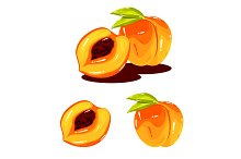 Peach Fruit Realistic Vector
