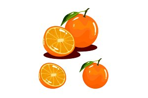 Orange Fruit Realistic Vector