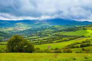 view of wonderful nature