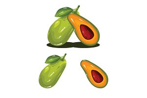Avocado Fruit Realistic Vector
