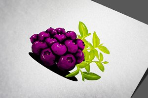 Blueberry Fruit Realistic Vector