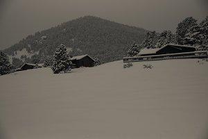 Somber winter