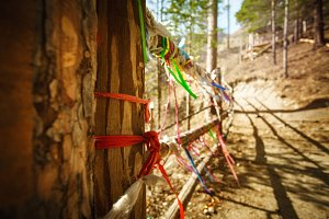 Colored ribbons on wooden bridge