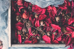 Dark pink Dried flowers in a wooden tray on blue