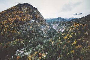 Mountains Forest Landscape aerial