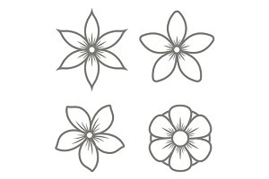 Jasmine Flower Icons Set