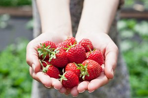 Strawberry in a woman's hands.