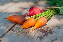 Carrot and beets on wooden table