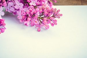 Bunch of lilac with blank paper page