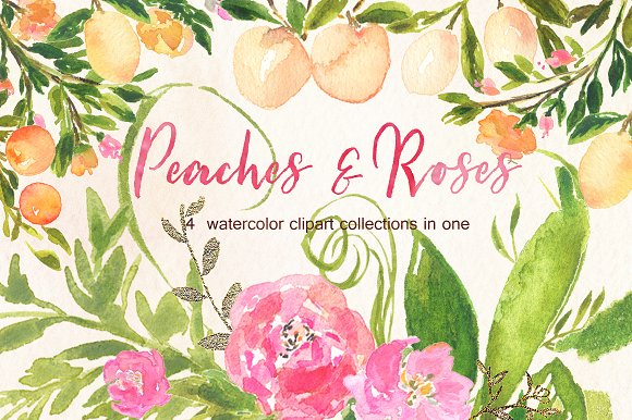 Peaches Roses And Gold Watercolor