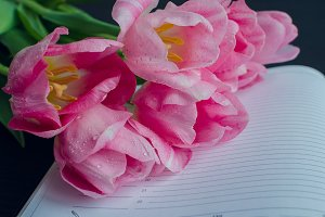 Tulips on empty notebook