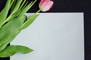 Bouquet of tulips and an empty paper