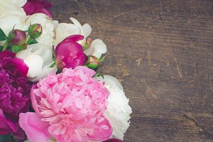 Peony horizontal background
