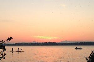 Paddle Boarders on Lake Washington