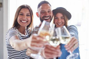 Friends clinking glasses of wine at camera
