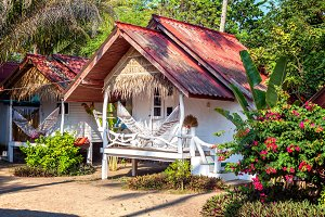 Bungalows in tropical jungles
