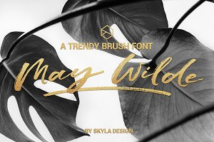 Trendy brush font, May Wilde