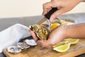 Opening oysters shells