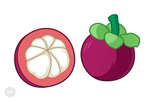 Mangosteen Cartoon Vector